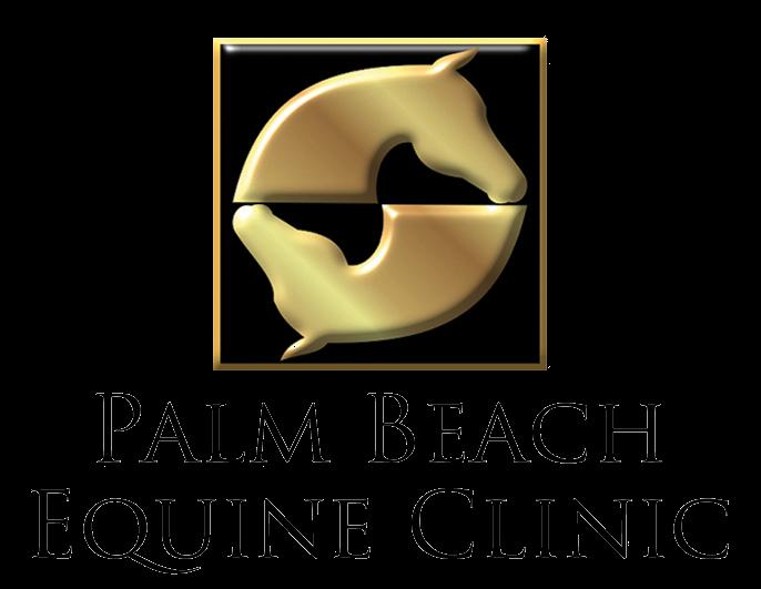 Palm Beach Equine Clinic